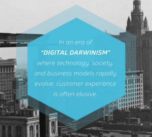 From Digital Darwinism to Digital Transformation