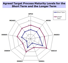 Agreed Target Process Maturity Levels for ST and LT