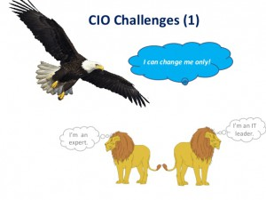 Challenges of a CIO (Part 1)